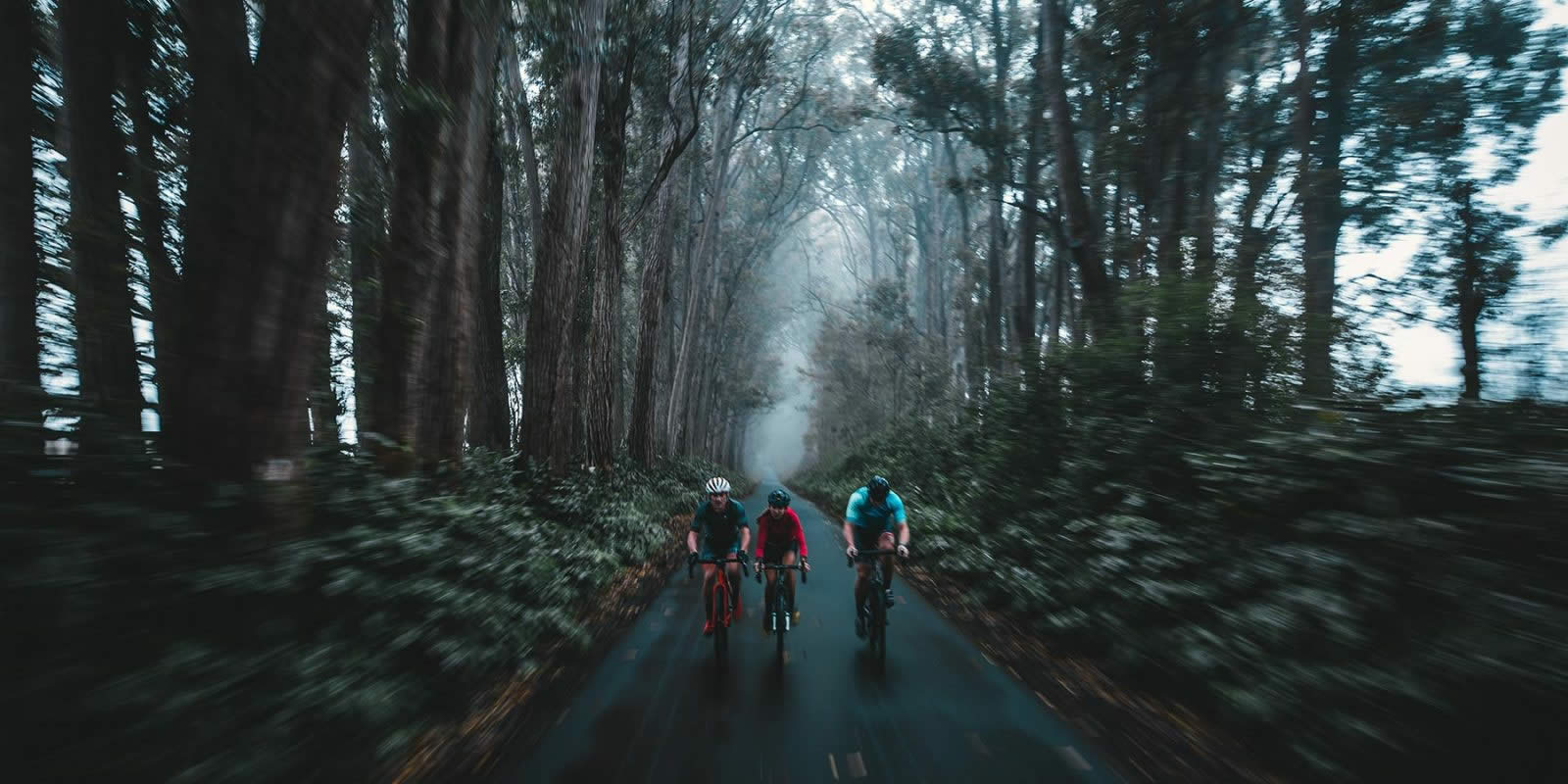 Bespoke Bike Tours Hawaii Big Island Bike Tours
