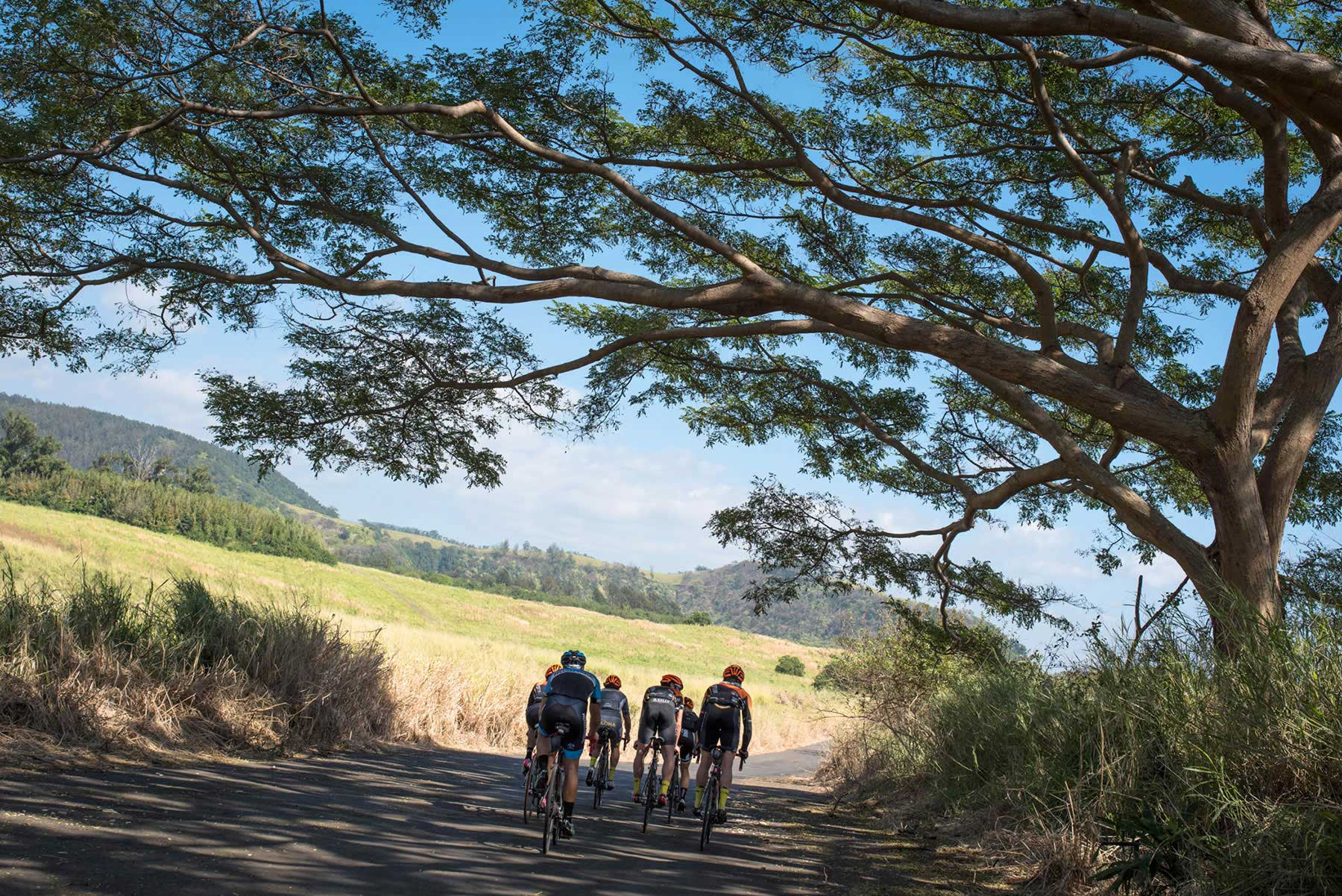 Hawaiian Vanilla Factory Road Bike Tour Big Island Bike Tours
